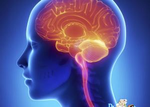Brain Tumor, Brain Metastases, Types, Causes, Symptoms, Treatments